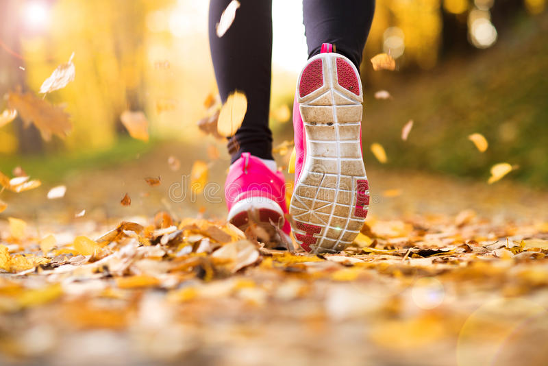 Download Runner stock photo. Image of lifestyle, jogging, pink - 34521126