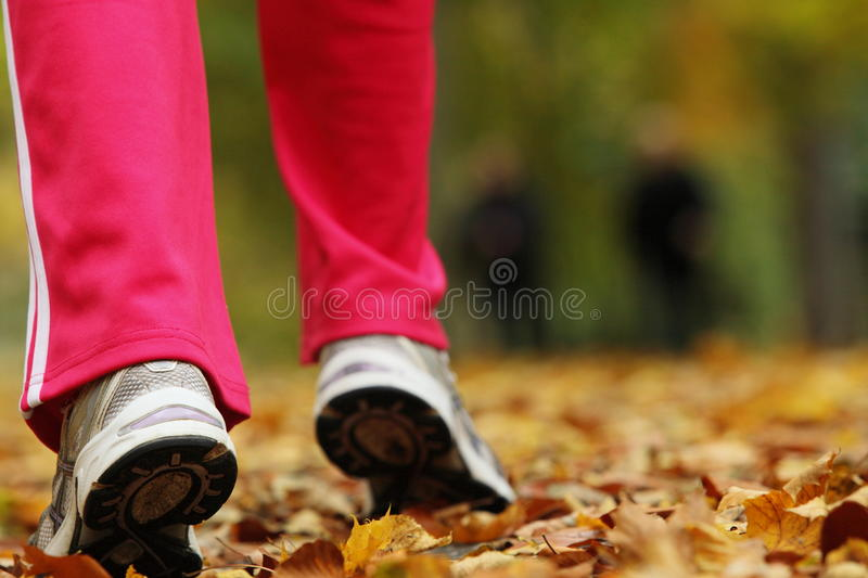 Runner legs running shoes. Woman jogging in autumn park royalty free stock photography