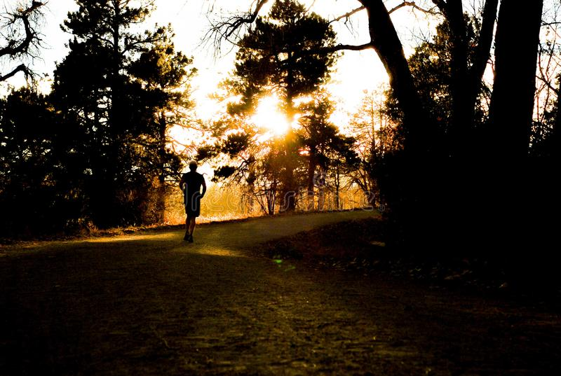 Runner in the Sunset royalty free stock photo