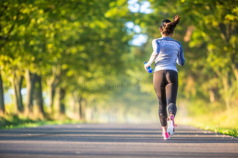 Runner woman in autumn park tree alley training in sports thermal underwear stock photo