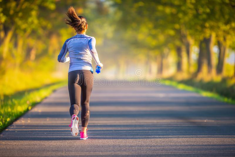 Runner woman in autumn park tree alley training in sports thermal underwear royalty free stock photo