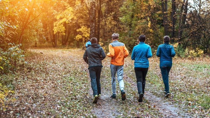 Running athletes in the park on a run in the early morning. Several children are running in the woods doing sports. Running athletes park run early morning stock photo