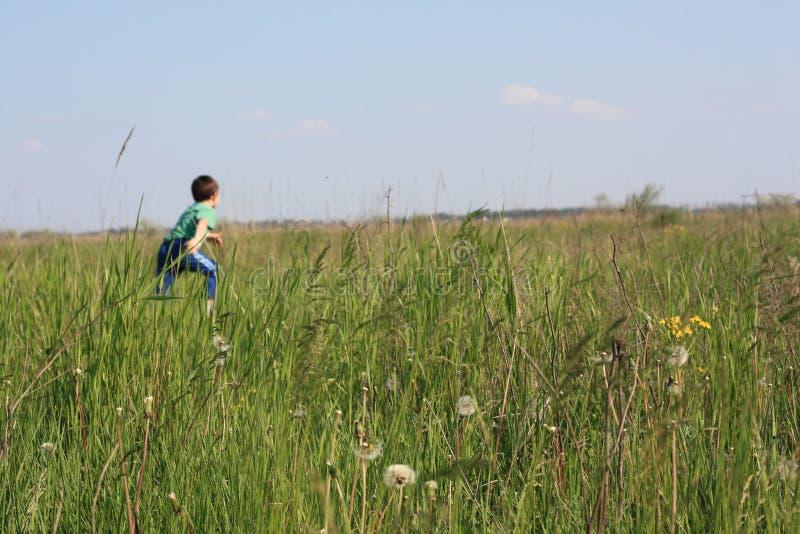 Download Running child stock photo. Image of active, running, dandelion - 19573348