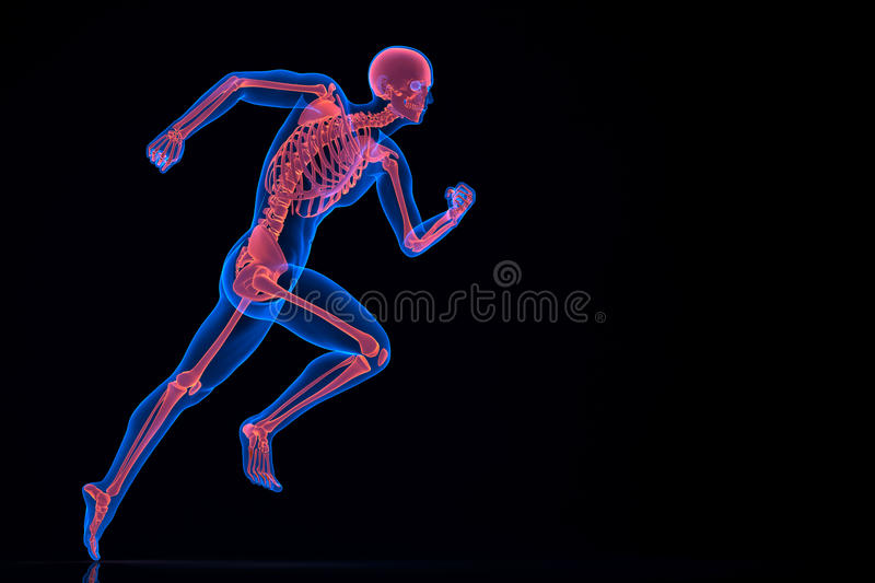 Running 3d skeleton. Contains clipping path royalty free illustration