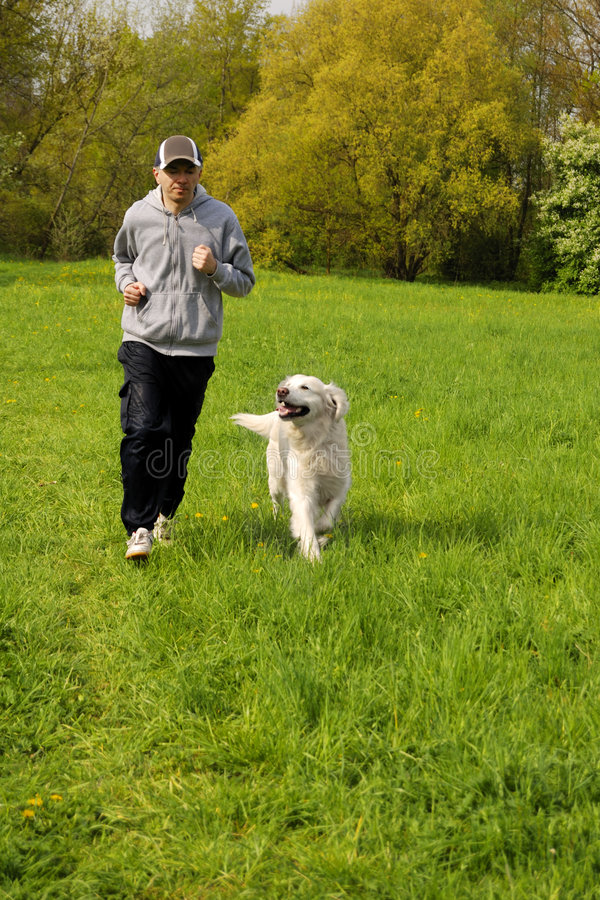 Running with the dog royalty free stock images