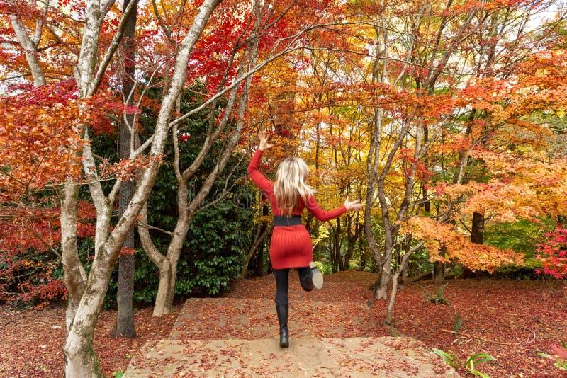 Running through the garden during Autumn royalty free stock photo