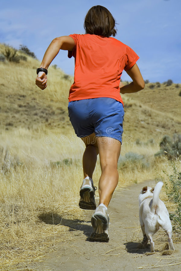 Download Running girl stock image. Image of jogging, chihuahua - 6147705