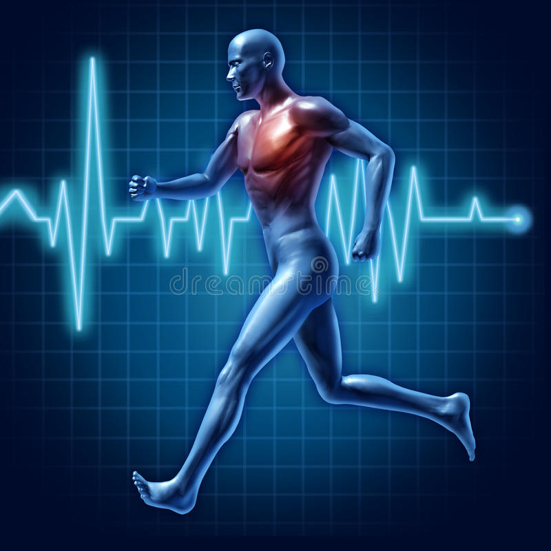 Running heart rate man active runner health chart vector illustration