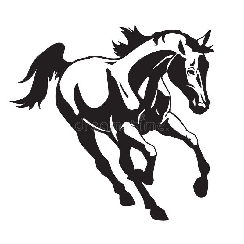 Download Running Horse Black And White Stock Images - Image: 27196684