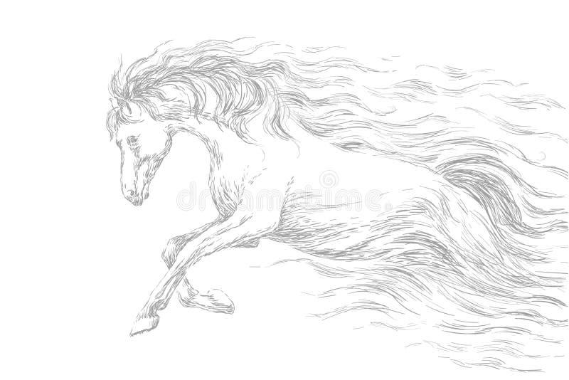 Running horse, line drawing, gray pencil sketch. vector illustration. stock illustration