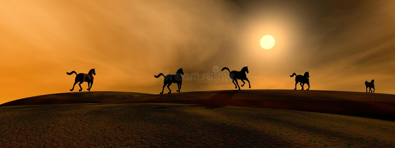 Running horses. Shadows of running horses by sunset royalty free illustration