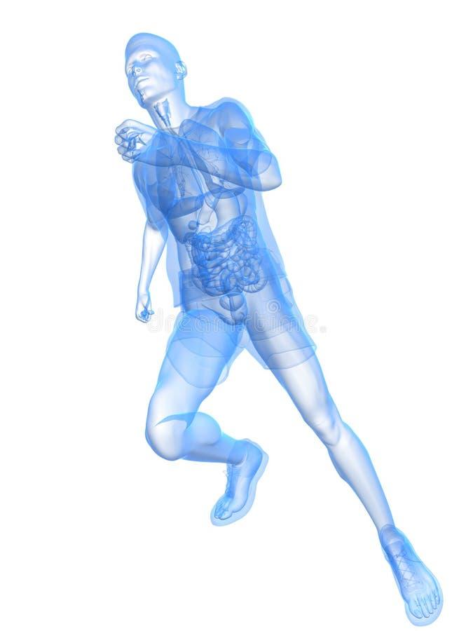 Running man. 3d rendered illustration of a transparent running man royalty free illustration