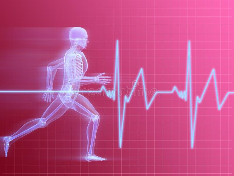 Running Man Anatomy Stock Photography
