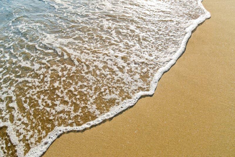 running sandwave arkivfoton