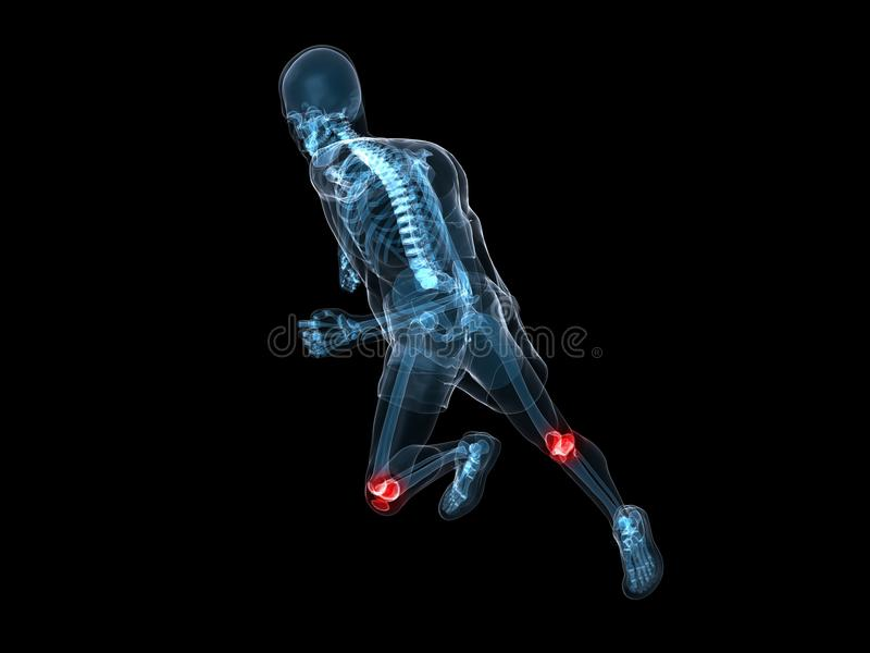 Running skeleton - painful knees. 3d rendered x-ray illustration of a running skeleton with highlighted knees stock illustration