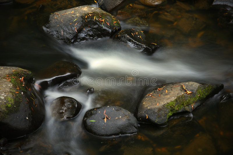 Download Running stream stock photo. Image of park, tranquil, flowing - 4203964