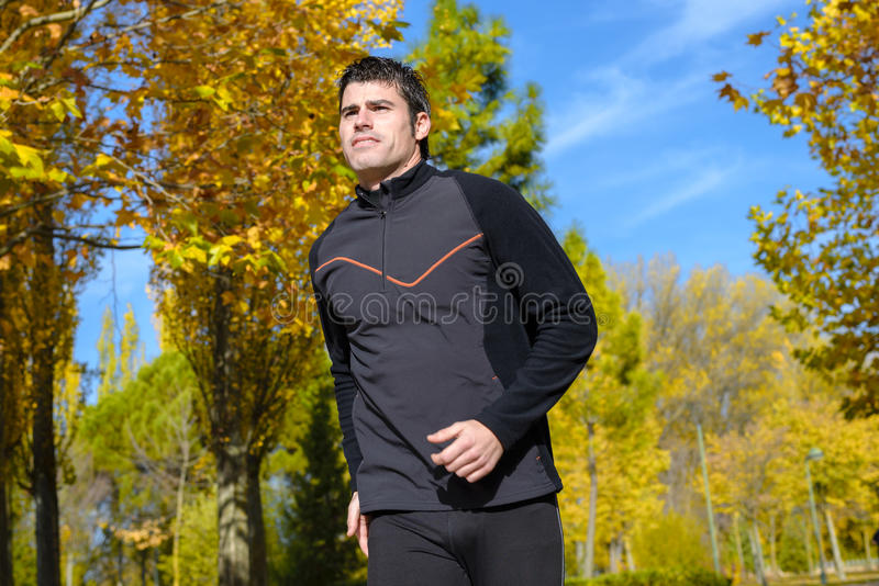 Download Running In Sunny Park Royalty Free Stock Photo - Image: 27819845