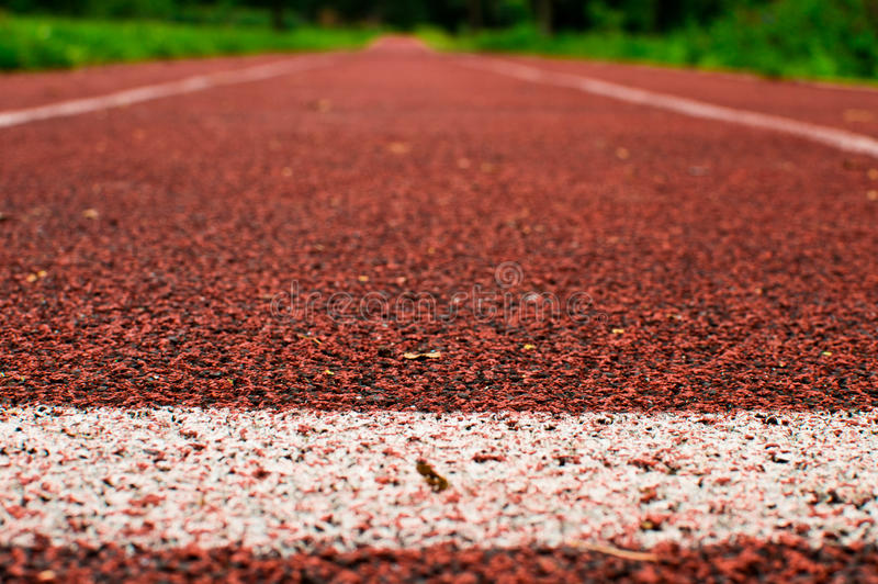 Running track. Covered with polyurethane stock photography