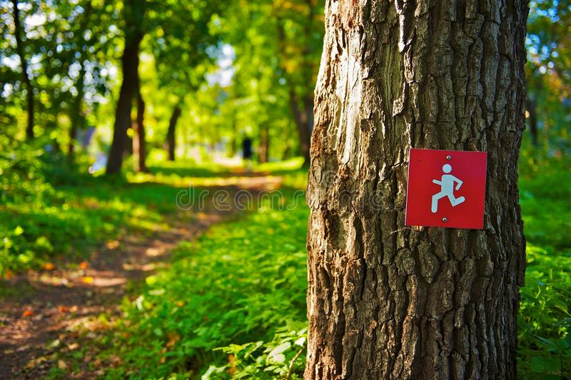 Running trail sign on tree royalty free stock photos