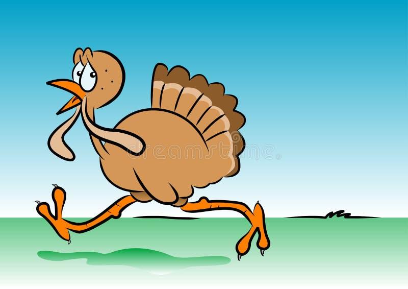 Running turkey royalty free illustration
