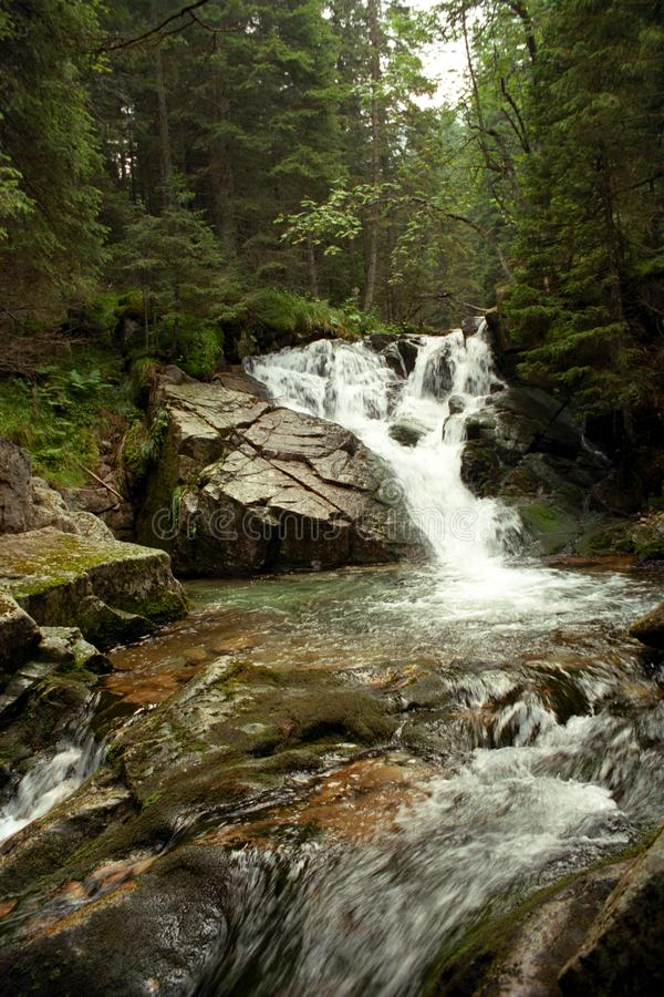 Download Running water stock image. Image of water, moss, mountain - 8711219