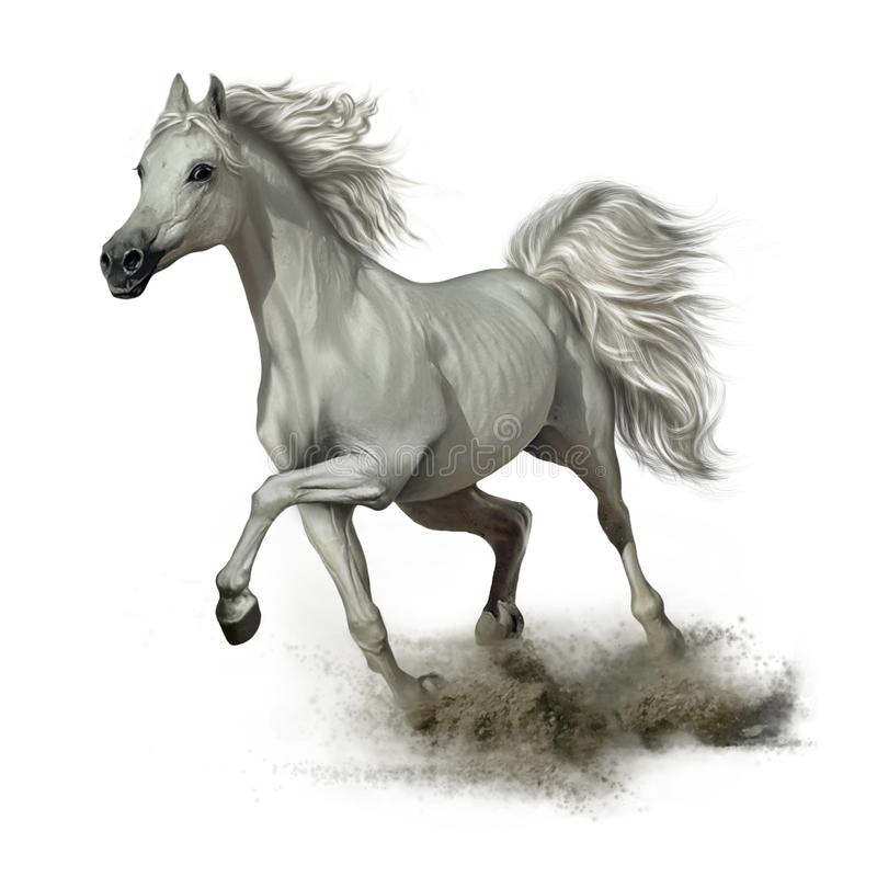Running white horse. On the sand, allure, mane and tail vector illustration