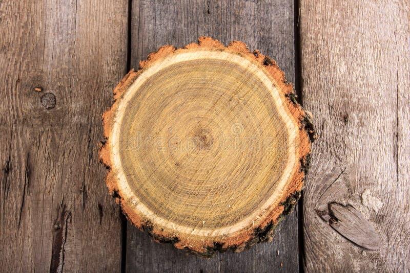 Runt snitt för trädstubbe med årliga cirklar på träbakgrund arkivbild