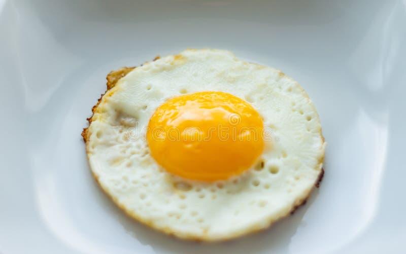 Runt stekt ägg i plattan royaltyfri bild