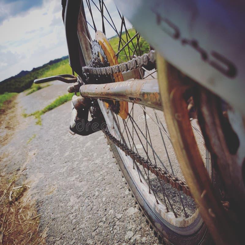 Ruota della bici immagini stock