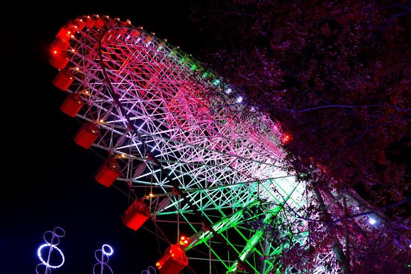 Ruota panoramica a Osaka fotografie stock libere da diritti