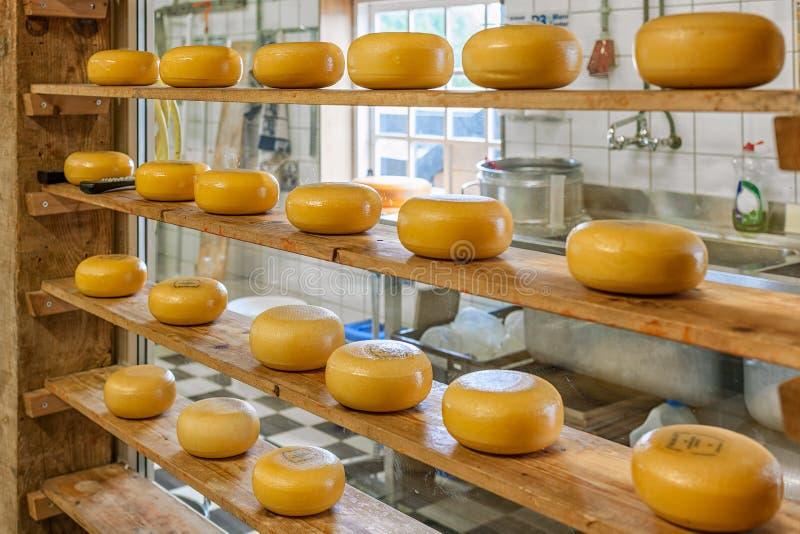 Ruote di formaggio a pasta dura sugli shelfs fotografia stock