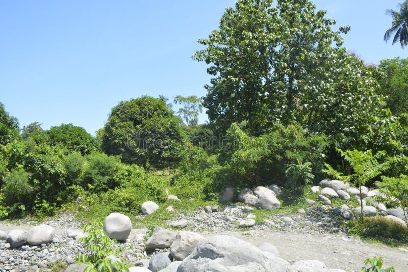 Ruparan riverbank die in barangay Ruparan, Digos-Stad, Davao del Sur, Filippijnen wordt gevestigd stock foto's