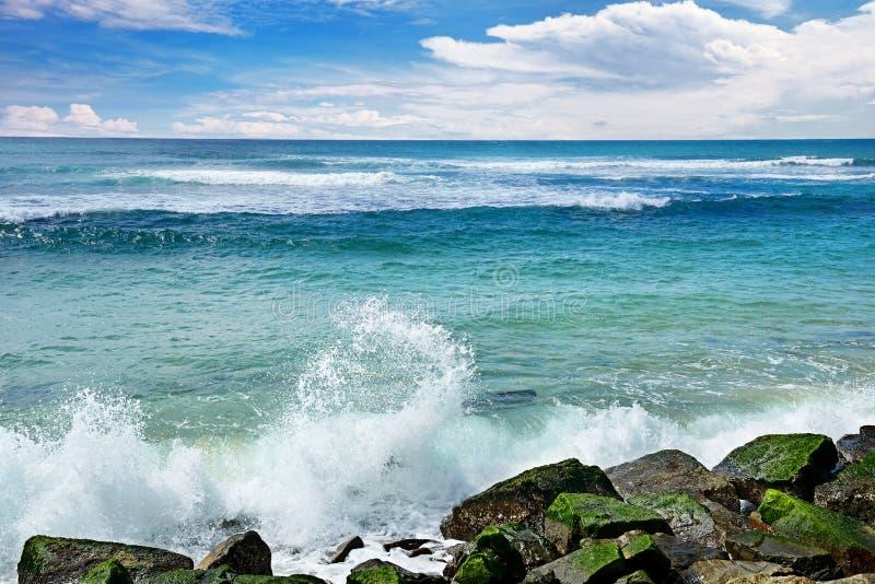 Ruptura das ondas contra a costa rochoso do oceano fotografia de stock