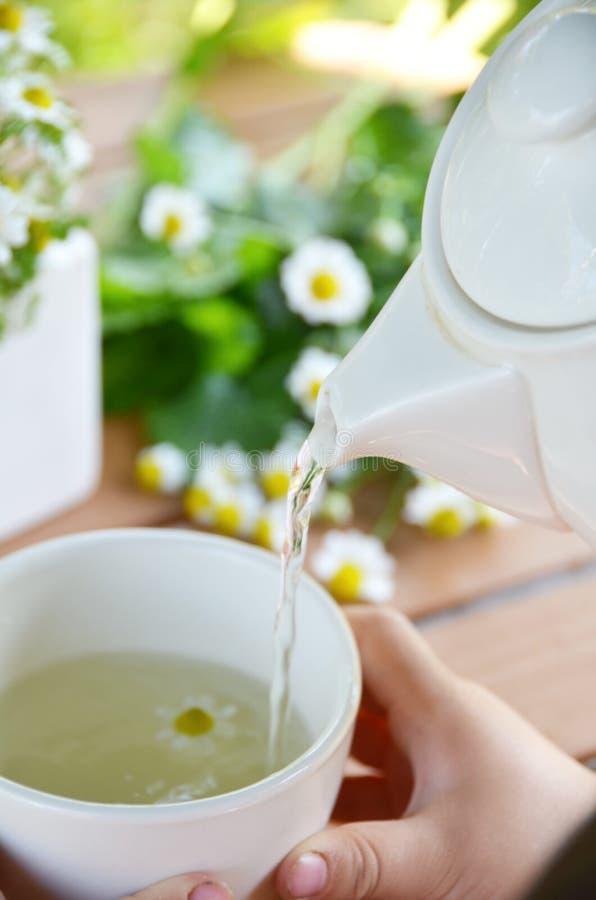 Ruptura de chá foto de stock