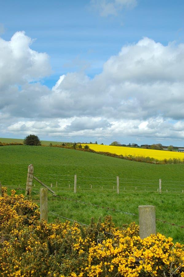 rural aberdeenshire fotografia royalty free