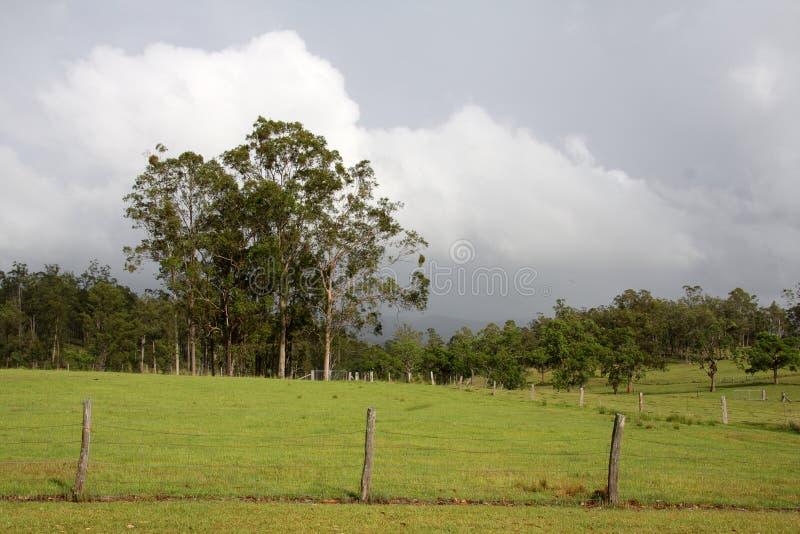 Rural Australia stock photo