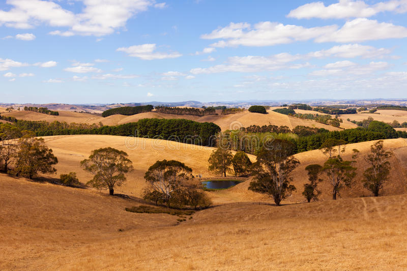 Australia countryside stock images