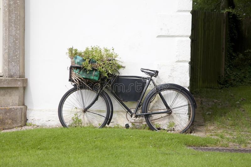 Download Rural Bike stock photo. Image of plant, space, cycle - 28410104