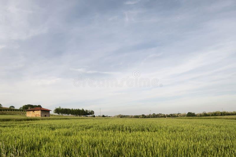 Rural building. In the Po valley, Mezzomerico, Italy stock image