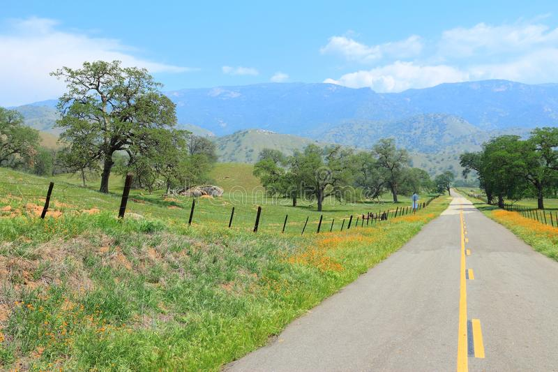 Rural California. California, United States - winding road in countryside landscape of Tulare County. Yokohl Drive royalty free stock photo
