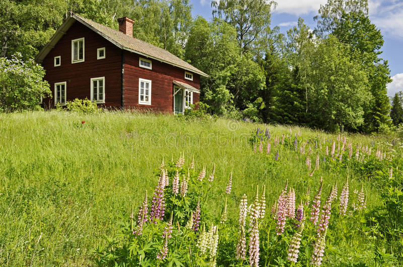 Rural cottage and garden royalty free stock photos