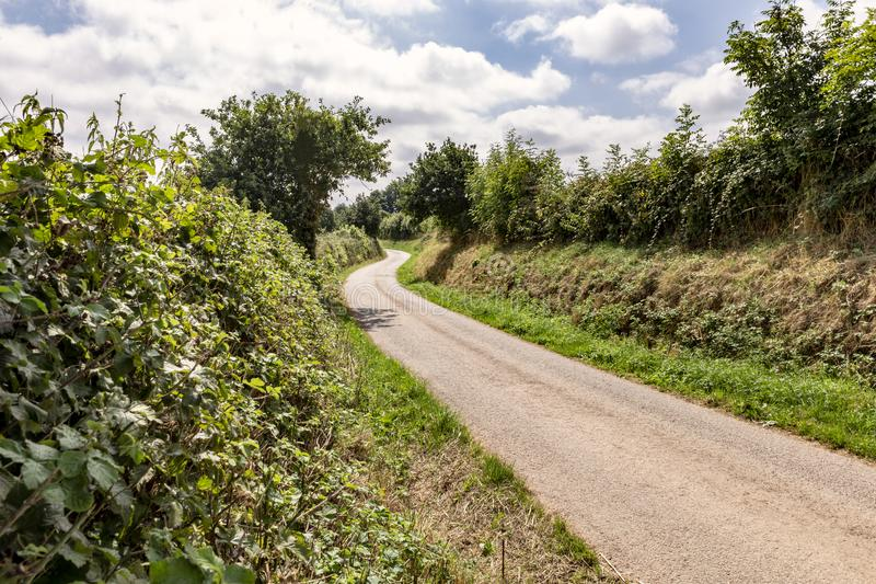 Rural country lane winding into the distance stock photo