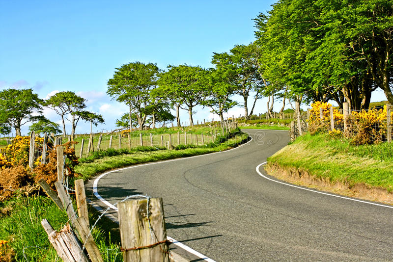 Download Rural Empty Road In Springtime Stock Photo - Image: 25178352