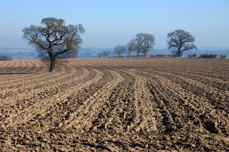 Download Rural English Winter Landscape Stock Image - Image: 4336463