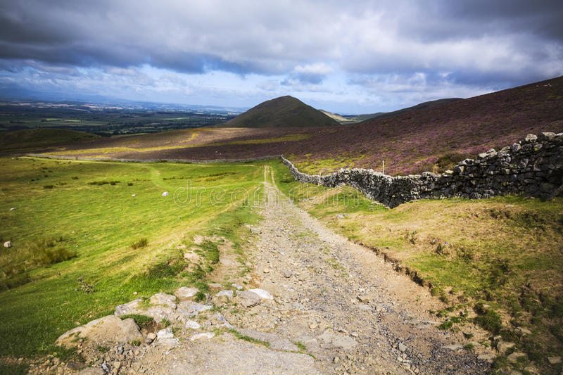 Download Rural Farm Road In English Countryside On Overcast Day Stock Photo - Image: 29161550