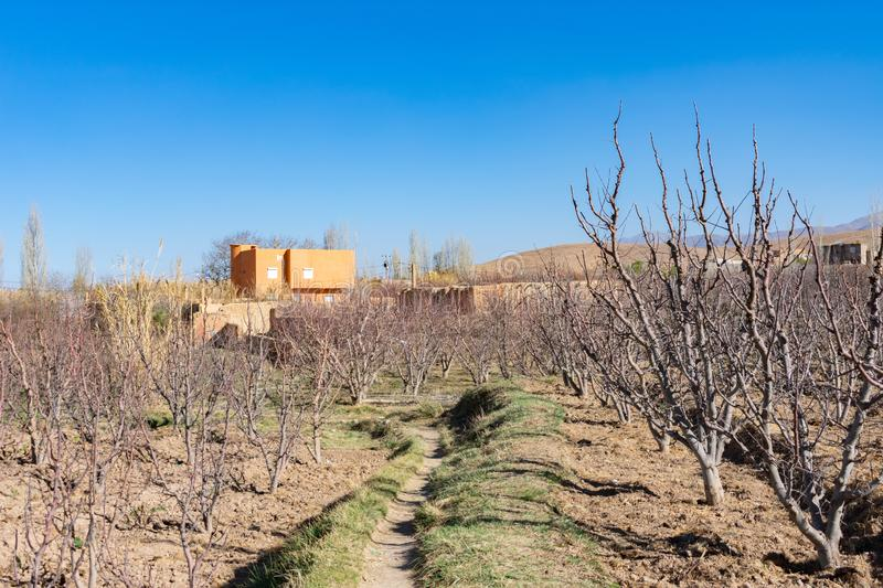 Rural Farm Scene with Bare Crops and a Building in Midelt Morocco stock images