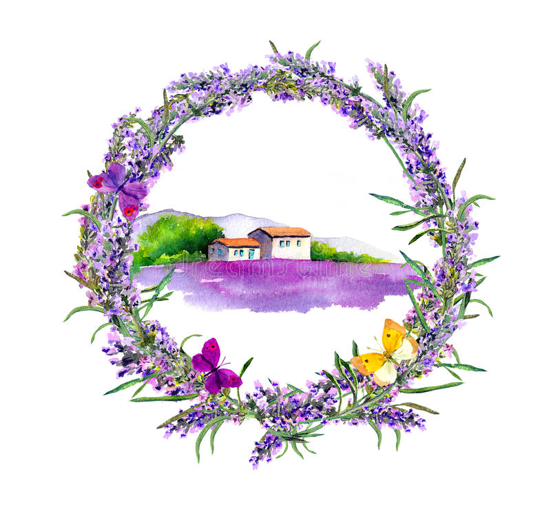 Rural farmhouse, lavender flowers field in Provence. Watercolor royalty free illustration