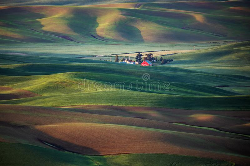 Rural farmhouse. Sunset in the fall over the fields of Palouse, Washington royalty free stock photo