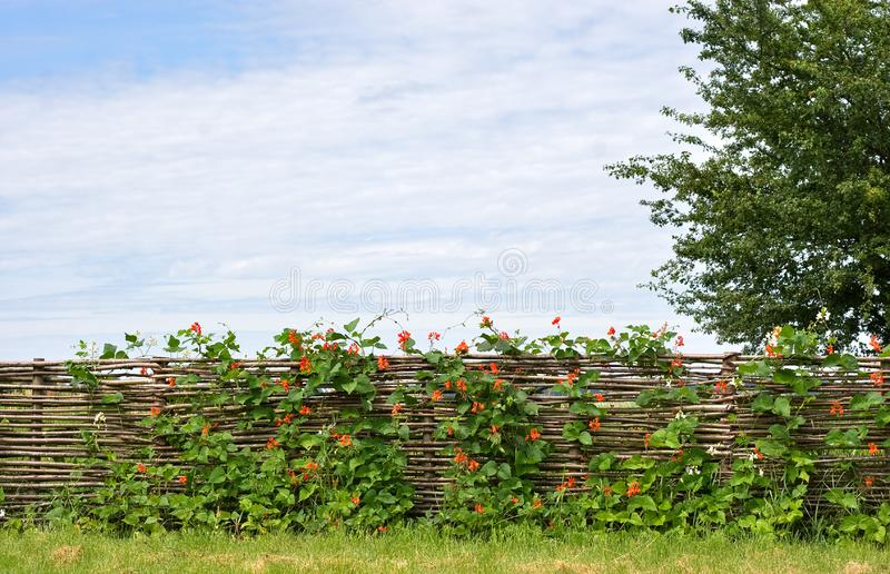 Rural fence landscape royalty free stock photos