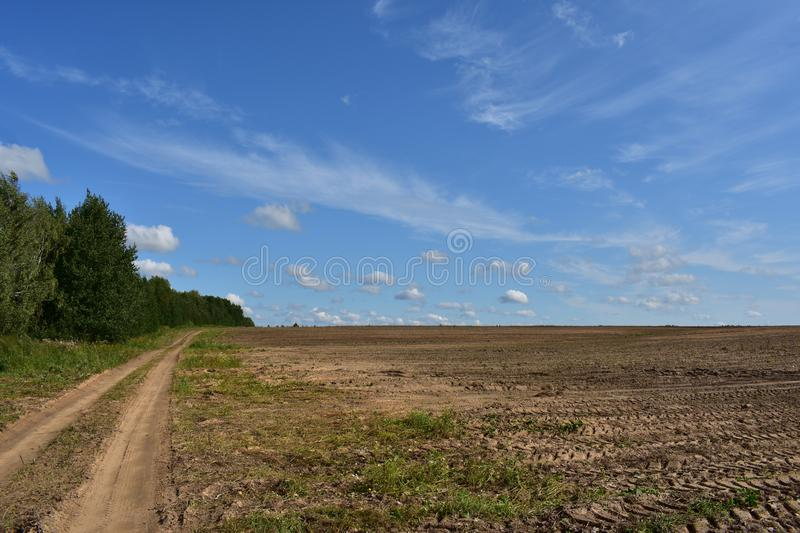 Rural field road along the woods and landscaped land of fresh arable land the Mick stay here and play, the sky clouds royalty free stock photos